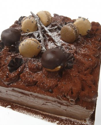 CHOCOLATE CAKE (L)